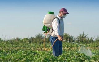 Гербициды для картофеля: название и описание средств защиты от сорняков