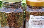 Перга пчелиная: полезные свойства, получение и заготовка, применение
