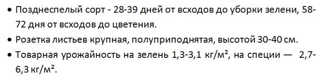 Укроп Кибрай: описание, посадка и уход, сбор и хранение урожая