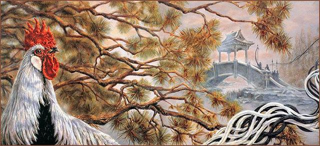 Порода кур Феникс: описание, фото, характеристики, особенности выращивания, отзывы