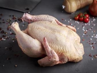 Мясные породы кур: описание пород, их особенности, достоинства и недостатки