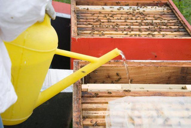 АпиМакс для пчел: описание и инструкция по применению препарата