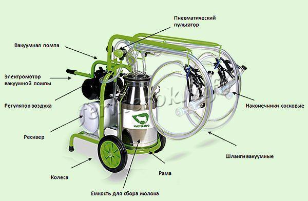 Доильный аппарат для коров: виды, преимущества, инструкция по использованию