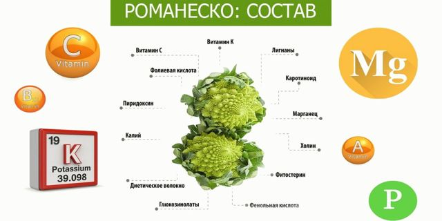 Капуста Романеско: описание, виды, посадка и выращивание