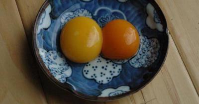 Яйца цесарок: описание, польза и вред, цена, выбор