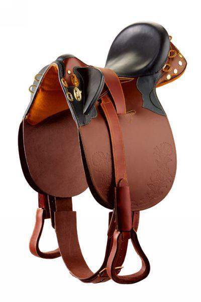 Верховые породы лошадей: описание с фото, показатели, достоинства, недостатки || Качества лошади