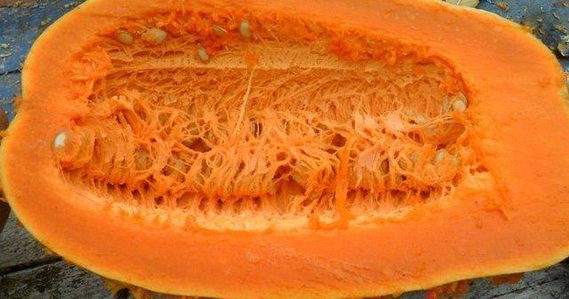 Прикубанская тыква: характеристики, сорта, фото, выращивание, отзывы