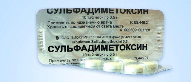 Болезни гусей: названия, их симптомы, причины и лечение