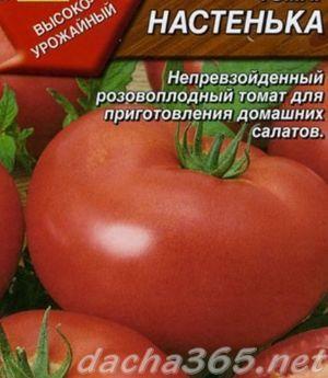 Томат Настенька: характеристика сорта, фото, правила посадки и ухода, отзывы