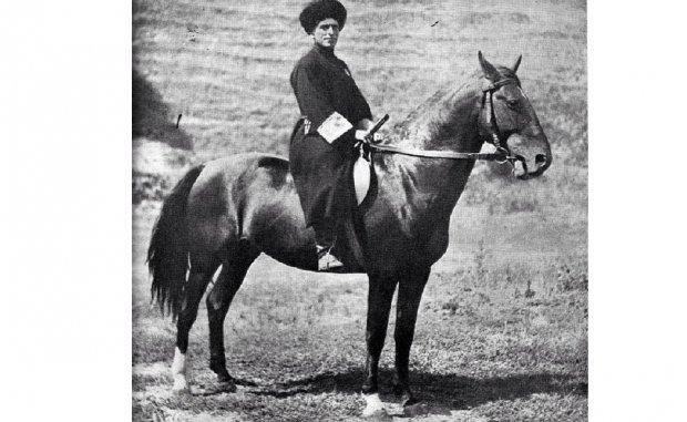 Карачаевская порода лошадей: фото, описание характеристик, правил ухода, содержания и разведения