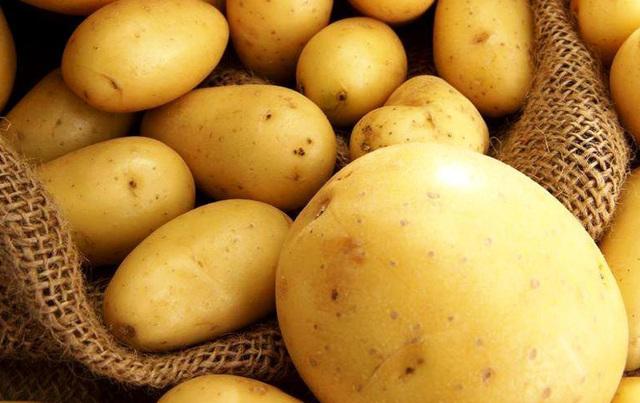 Картофель «Ривьера»: описание сорта, посадка, выращивание и уход, отзывы