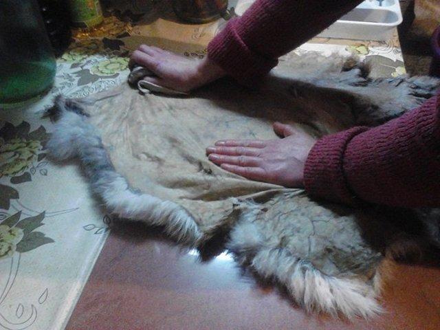 Выделка шкур кролика в домашних условиях: пошаговые инструкции