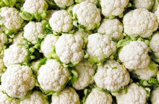 Лучшие сорта цветной капусты: названия, описания, правила выращивания