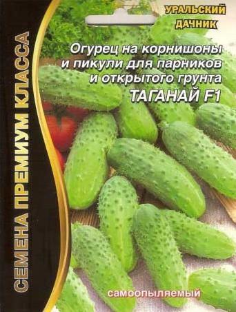Огурцы Таганай: описание, агротехника, фото, посадка, уход, сбор урожая