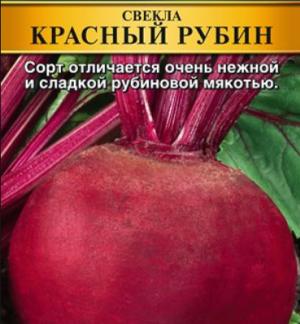 Свекла Подзимняя: описание сорта, фото, выращивание, отзывы