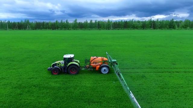 Подкормка озимой пшеницы: сроки, методы и рекомендации по удобрению
