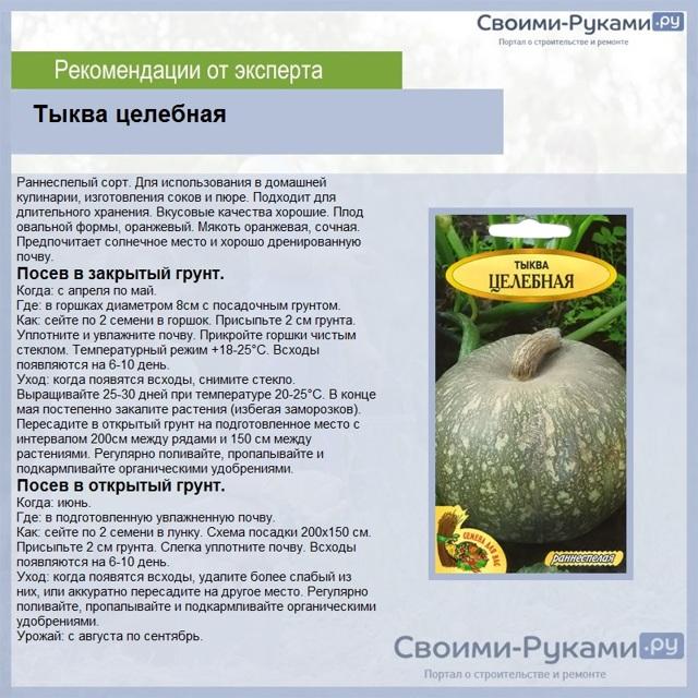 Тыква Крошка: описание сорта, фото, посадка, выращивание, отзывы