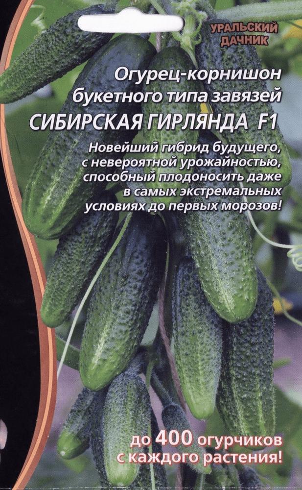 Огурцы Сибирская гирлянда: описание гибрида, фото, посадка, уход и отзывы