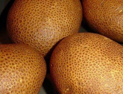 Картофель «Киви»: описание сорта, фото, правила выращивания и ухода