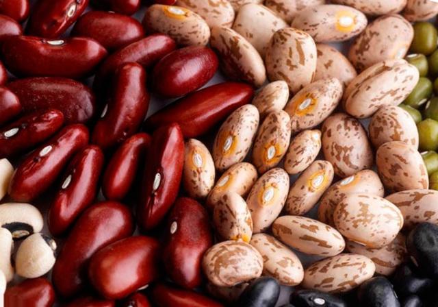 Спаржевая фасоль: выращивание и уход в открытом грунте, болезни и вредители, сбор и хранение урожая
