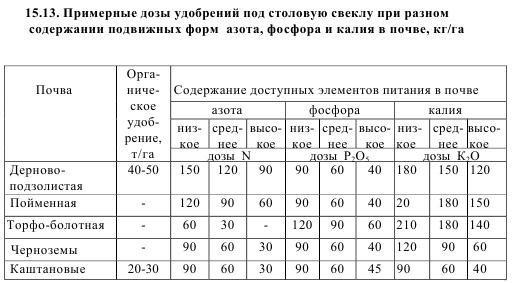 Подкормка свеклы в открытом грунте: удобрения, правила внесения, сроки