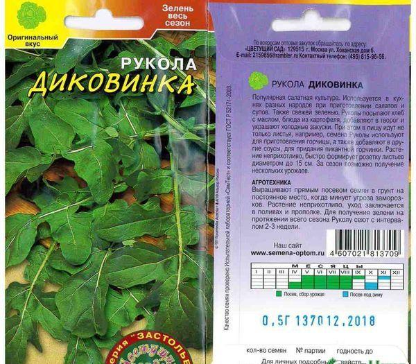 Руккола: выращивание из семян, посадка и уход, сбор урожая