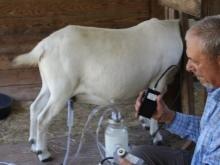 Доильный аппарат для коз: принцип действия, виды и как сделать своими руками?