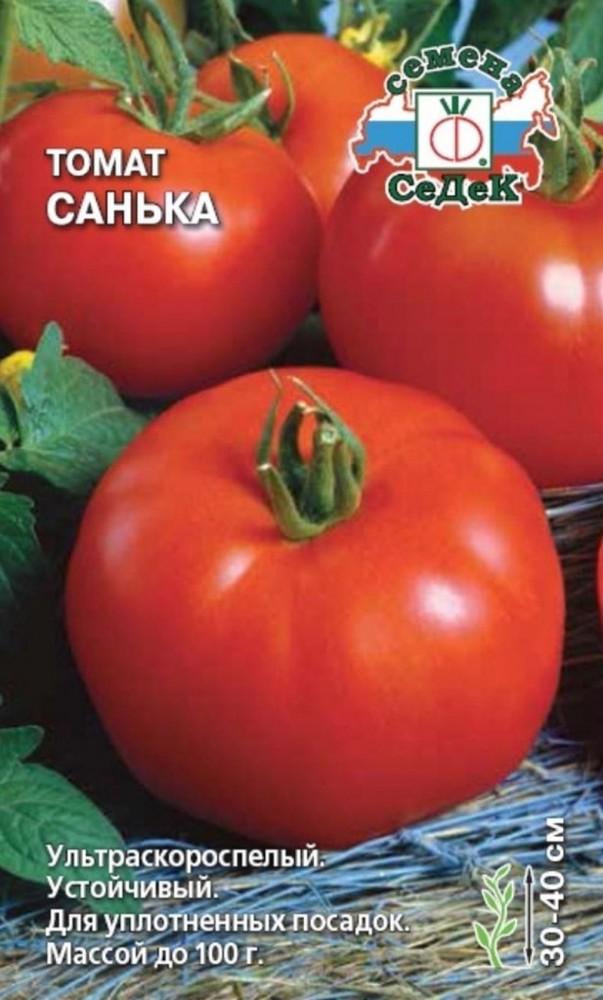 Томат Санька: характеристики сорта, фото, посадка, секреты правильной агротехники и отзывы