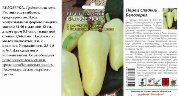 Перец Белозерка: описание и характеристики сорта, фото, посадка, выращивание и уход, отзывы