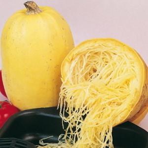 Кабачок Спагетти: описание сорта, фото, выращивание, уход, отзывы