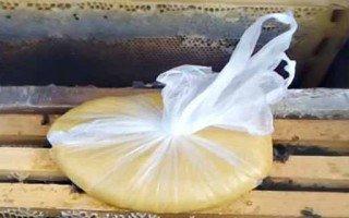 Канди для пчел: что это, как приготовить и когда подкармливать