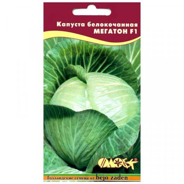 Капуста Мегатон: описание сорта с фото, посадка и уход, отзывы