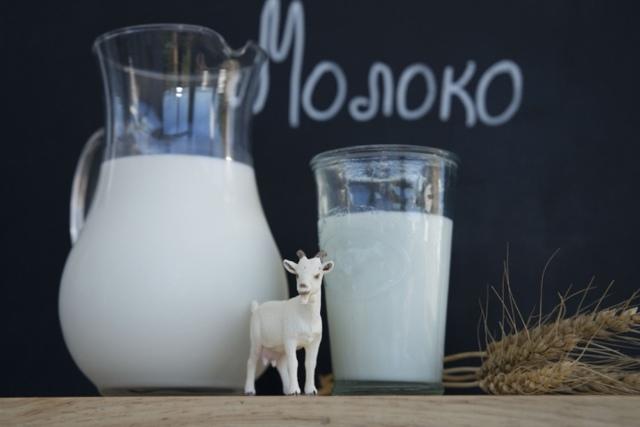 Сколько литров молока дает коза и как повысить удой за день?