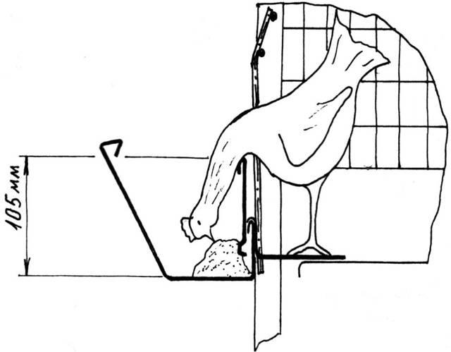 Клеточное содержание кур-несушек: правила и как сделать клетку