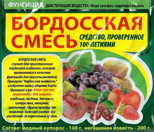 Альтернариоз картофеля: пути заражения, симптомы, лечение, профилактика