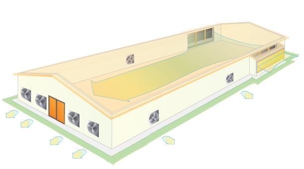 Вентиляция свинарника: виды, способы организации и устройство своими руками