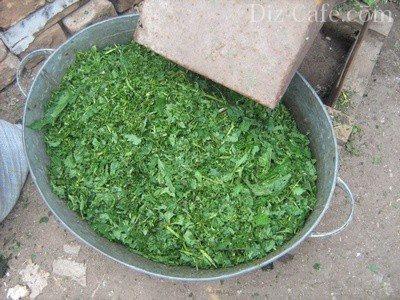 Измельчитель травы для кур своими руками: принцип работы, технические характеристики