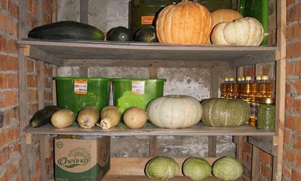 Хранение кабачков: лежкие сорта, условия, способы, сроки