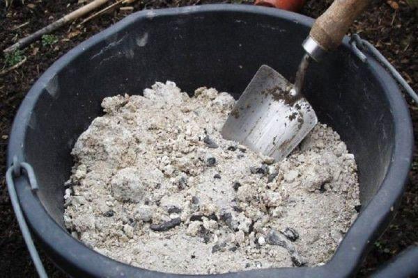Подкормка огурцов в открытом грунте: виды удобрений, когда и как их вносить?
