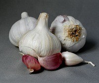 Чеснок Добрыня: описание сорта, правила выращивания, отзывы