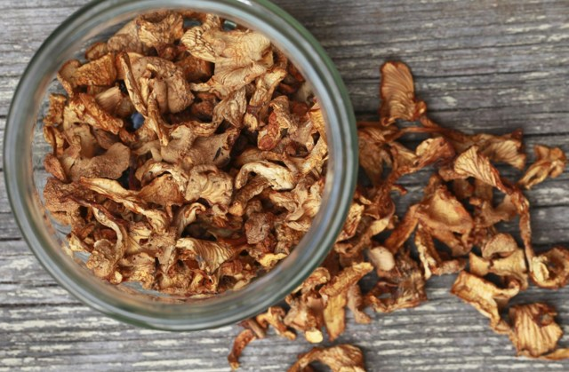 Как сушить грибы вешенки в домашних условиях: способы и условия хранения