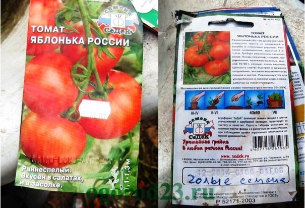 Томат Яблонька России: описание сорта, фото, выращивание, плюсы и минусы, сбор урожая