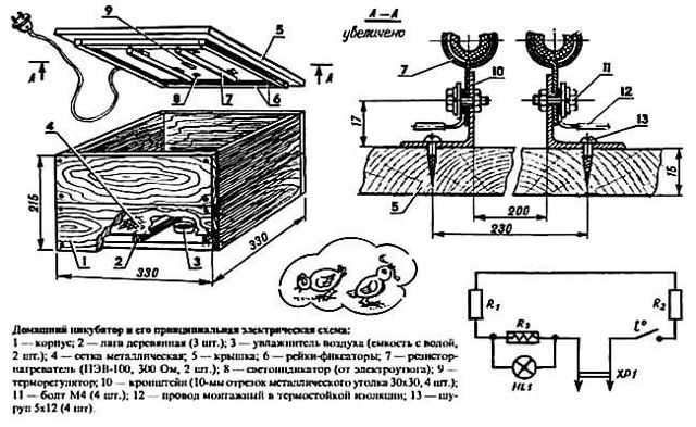 Разведение и содержание перепелов: обустройство клетки, кормление, инкубация, убой