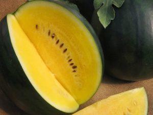 Желтый арбуз: описание, выращивание, чем отличается от красного арбуза