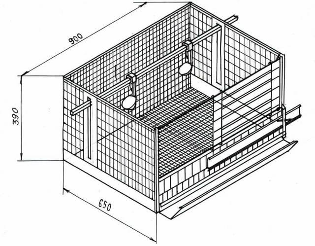 Клетка для перепелов своими руками: пошаговая инструкция и полезные советы