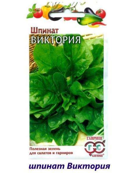 Лучшие сорта шпината с фото и описанием